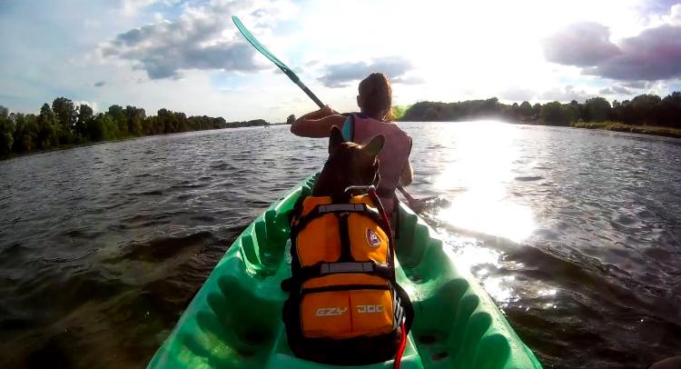 Randonner en canoë et bivouaquer sur les îles de la Loire avec son chien